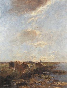Polderlandschaft mit Kühen (Sommertag)