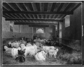 Garnisonsstall in Rosny-sur-Seine