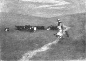 Ziegenherde