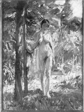 Weiblicher Akt in Landschaft