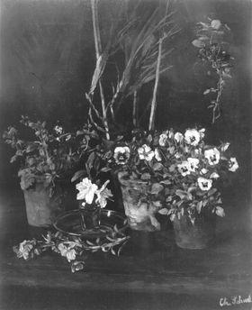 Blumenstillleben mit Stiefmütterchen
