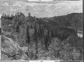 Schlossleite Grünwald