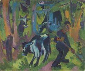 Kühe im Walde