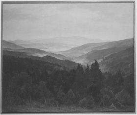 Aus dem Bayerischen Wald