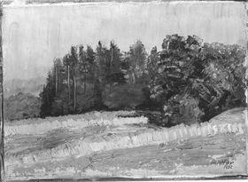 Waldmotiv bei Wessobrunn