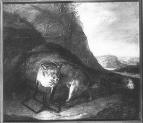 Ein Fuchs in Schlageisen