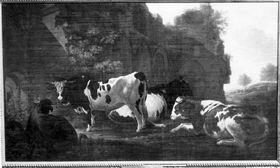 Rinder vor einer Kirchenruine