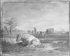 Rinderherde bei einem See