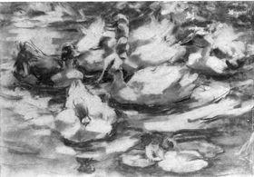 Schwimmende Enten