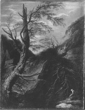 Wilde Felsenlandschaft