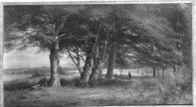 Landschaft mit Buchengruppe