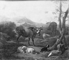 Vieh auf einem Bergweg