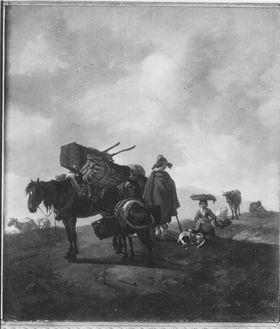 Beladene Pferde