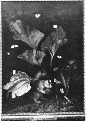 Blumenstillleben mit Schmetterlingen, Eichhörnchen und Schlange