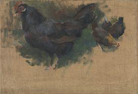 Hühner (Studie)