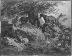 Weidende Pferde im Gebirge
