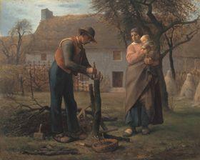 Bauer beim Pfropfen eines Baumes