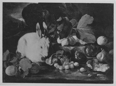 Stillleben mit Kaninchen