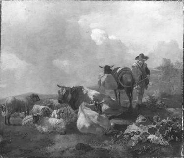 Viehherde