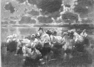 Enten am Wasser unter aufgerissenem wolkenbedecktem Himmel