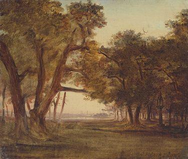 Waldlandschaft bei Morgenstimmung