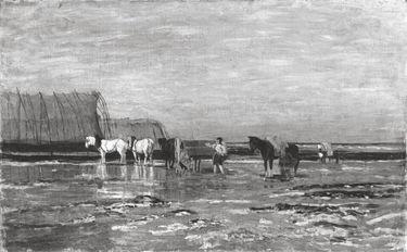 Pferde im Wattenmeer