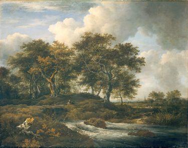 Eichen an einem Gießbach