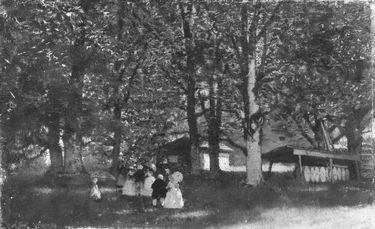 Promenade im Wald