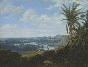 Brasilianische Landschaft mit Ameisenbär