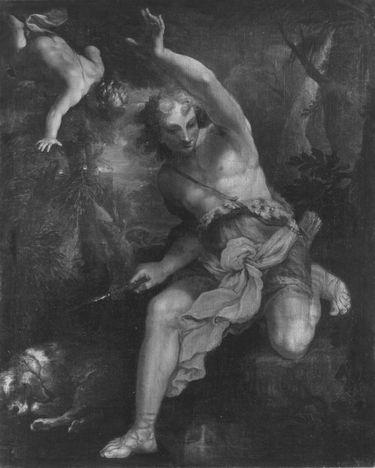Narzissus