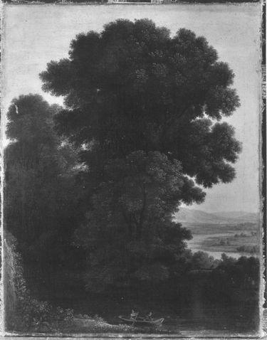 Abendlandschaft mit dichter Baumgruppe