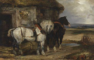 Zwei Pferde vor einem Stall