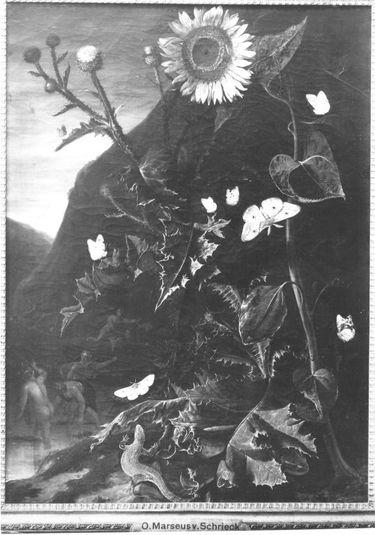 Blumenstillleben mit Sonnenblume, Schmetterlingen, Eidechse und Nymphen