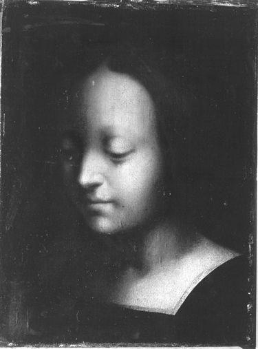 Jugendliches weibliches Bildnis
