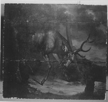 Ein Kümmerer (Hirsch)